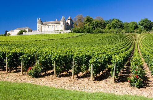 Burgund einmal anders