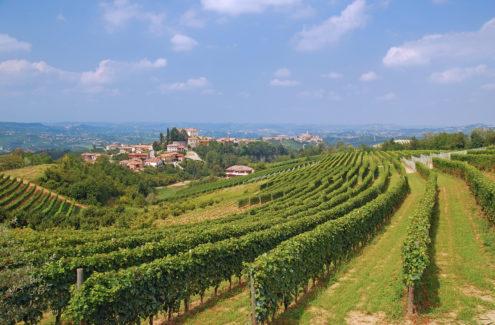 Piemont Langhe ©travelpeter - Fotolia