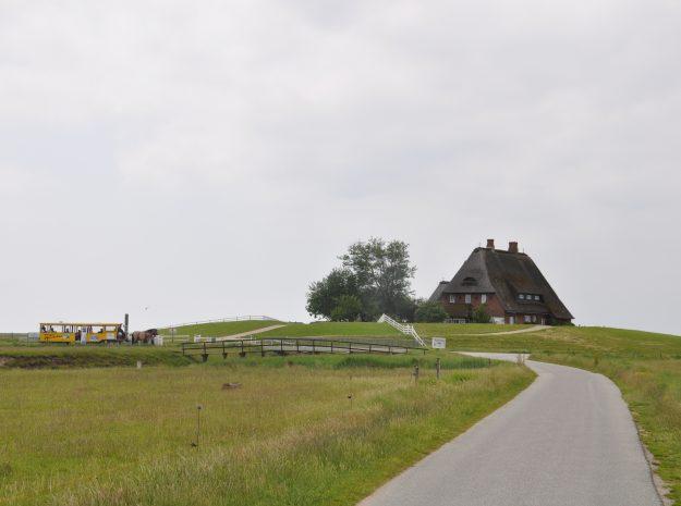 Nordsee Hooge