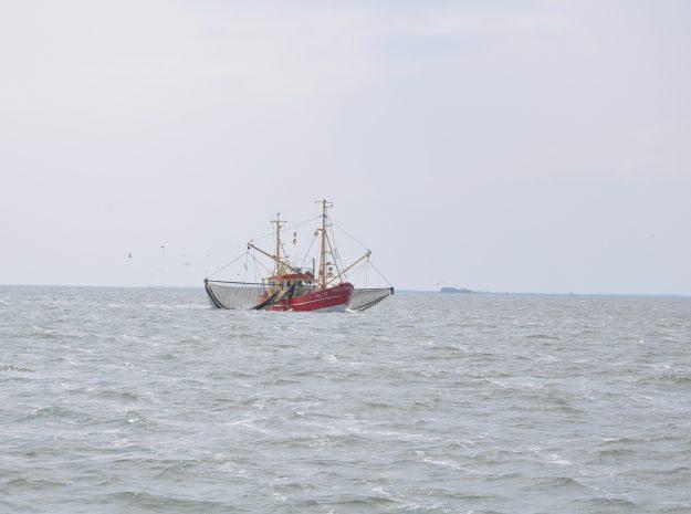 Nordsee Krabbenkutter