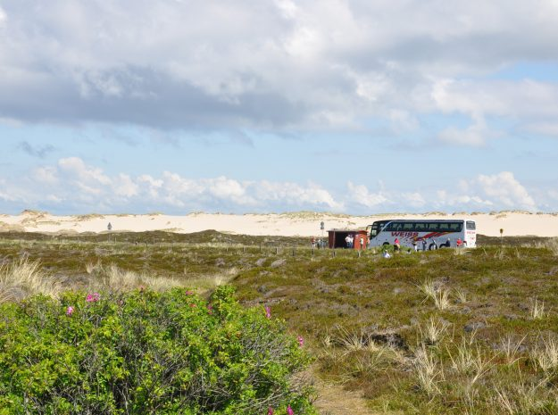 Nordsee Sylt