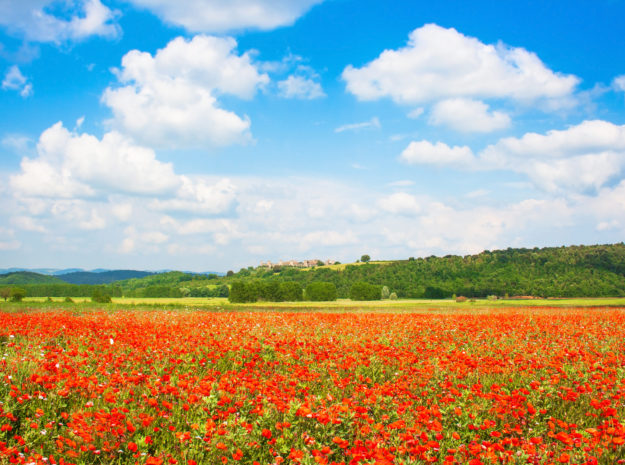 Toskana Landschaft ©JFL Photography - Fotolia