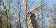 Windmühle-Keukenhof ©Keukenhof