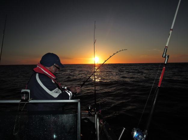 Fischerreise Hitra 22©Weiss Reisen