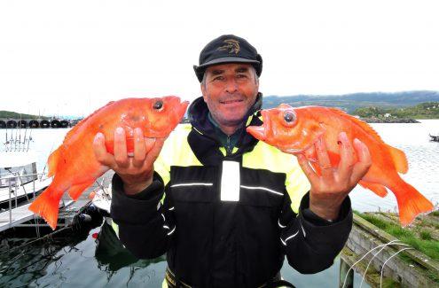 Fischerreise Vengsøy ©Weiss Reisen