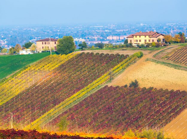 Castelvetro, Modena©ronnybas-123RF